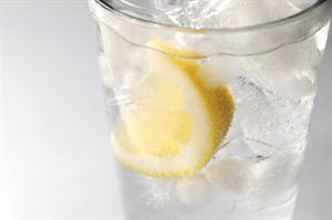 lemon4_R