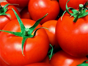 tomato1_R